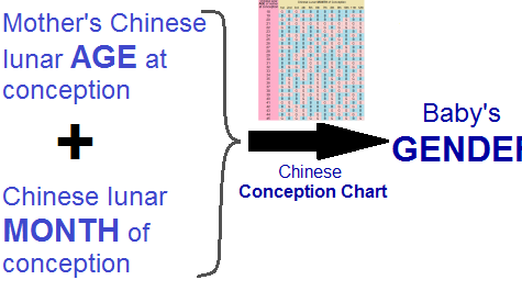 How to Conceive a Baby Boy or Girl using Chinese Calendar